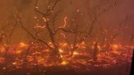 Εφιαλτικό βίντεο από τις πυρκαγιές στην Αυστραλία
