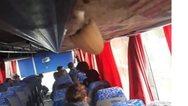 Κύπρος: Από τη μούχλα σε σχολικό λεωφορείο φύτρωσε μανιτάρι