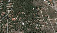 Το νέο σχέδιο για την τακτοποίηση των δασικών αυθαιρέτων