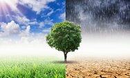 Τη μεγαλύτερη ετήσια αύξηση θα σημειώσουν τα επίπεδα διοξειδίου του άνθρακα στην ατμόσφαιρα το 2020