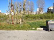 Πάτρα: Βάτα, καλαμιές και αγριόχορτα δίπλα από σχολεία στην Αγυιά (φωτο)