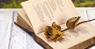 Αθήνα: Έρχεται το συνέδριο 'η Ποίηση Σήμερα'