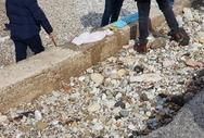 Πάτρα: Εντοπίστηκε η μητέρα του νεκρού βρέφους