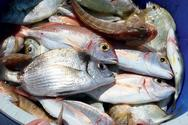 Tips για να επιλέγετε φρέσκα ψάρια