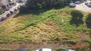 ΟΙΚΙΠΑ: 'Ως πότε θα «θάβουμε» στο τσιμέντο τις πλατείες μας;'