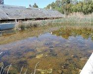 Πάτρα: Τετραμερής συνάντηση στην Περιφέρεια για την ανάπλαση του χώρου του παλαιού κολυμβητηρίου της Αγυιάς