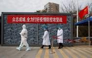 Η Κίνα απαγορεύει «τελείως» το εμπόριο και την κατανάλωση άγριων ζώων