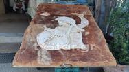Γιγαντιαία λαγάνα 160 κιλών στη Φθιώτιδα (φωτο)
