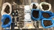 Κατασχέθηκαν περίπου 2,5 κιλά κάνναβης και ασύρματοι πομποδέκτες στην Πάτρα