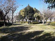 Πάτρα - Η πλατεία Αγίου Γεωργίου μέσα στο πράσινο (φωτο)