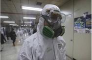 Κορωνοϊός - Το ελληνικό ερευνητικό κέντρο Φλέμιγκ επιστρατεύεται στη μάχη κατά του ιού
