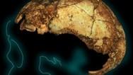 Ανακαλύφθηκε το αρχαιότερο κρανίο Homo erectus