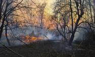 Μαίνεται ανεξέλεγκτη η πυρκαγιά στο Τσερνόμπιλ