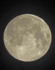Πάτρα - Όταν το φως της σελήνης «έσπασε» κάθε μορφής καραντίνα!