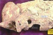 Ανακαλύφθηκε κρανίο πρωτοβυζαντινής περιόδου στη Θάσο