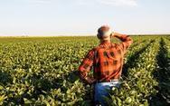 Νέο πρόγραμμα διακανονισμών για τους αγρότες