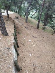 Πάτρα: Σκουπίδια και γεμάτα καλάθια στον χώρο του Δασυλλίου (φωτό)