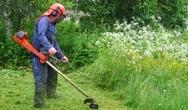 Πάτρα: Κάλεσμα στους πολίτες από το Δήμο για καθαρισμό των οικοπέδων τους