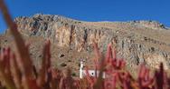 Στροφυλιά - Το σπάνιο οικοσύστημα με απαράμιλλη αισθητική και οικολογική σημασία (φωτο)