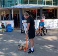 Σκύλος κάνει τα πάντα προκειμένου να μη γυρίσει στο σπίτι (video)