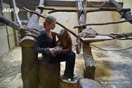 Ουκρανία - Ζωολογικός κήπος δεν έχει έσοδα για να φροντίσει τα ζώα του (φωτο+video)