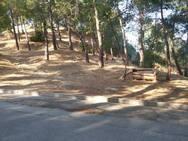 Πάτρα: Συναγερμός στην Πυροσβεστική για καπνό στο Δασύλλιο