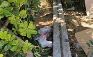 Τα μαύρα του τα χάλια έχει ο μόλος της Πάτρας - Ξερά χόρτα, σκουπίδια και εγκατάλειψη! (φωτο)