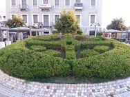 Πάτρα: Το άνθινο ρολόι με τους χαλασμένους δείκτες και τους θάμνους που πήραν τη θέση των λουλουδιών!