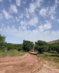 Πάτρα - Καθαρισμός και διάνοιξη του ορεινού δρόμου από το Σούλι μέχρι το Παναχαϊκό (φωτο)