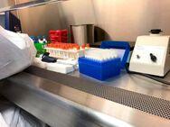 Κορωνοϊός: Αρχίζει ξανά παγκόσμια έρευνα για την υδροξυχλωροκίνη