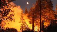 ΗΠΑ: Προειδοποίηση για τις δασικές πυρκαγιές