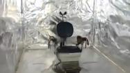 Ολλανδία: Η αστυνομία ανακάλυψε κρυφό θάλαμο βασανιστηρίων (video)