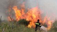 Εύβοια: Φωτιά στην περιοχή Προφήτης Ηλίας