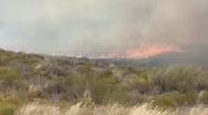 Πυρκαγιά σε χαμηλή βλάστηση φτάνει σε δευτερόλεπτα μέχρι τον δρόμο (video)