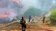 Θλίψη για τον 54χρονο εκπαιδευτικό στην Ηλεία - Προσπάθησε να σώσει άλογα από τη φωτιά (video)