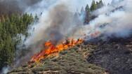 Παραμένει υψηλός ο κίνδυνος πυρκαγιάς σε Αχαΐα και Ηλεία το Σάββατο