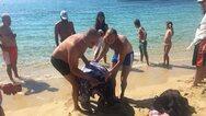 Τραυματισμένη θαλάσσια χελώνα στις ακτές της Νάξου - Λουόμενοι έσπευσαν για βοήθεια (φωτο)