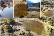 Αχαΐα - Η μικρή λιμνούλα μέσα στα έλατα, στο Μικρόνι (video)