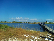 Δυτική Αχαΐα: Ψάρι με το… ευρώ βγάζουν παράνομοι αλιείς από τη λιμνοθάλασσα του Γκέρμπεσι
