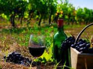 Τα κρασιά της Δυτικής Ελλάδας στις αγορές του εξωτερικού