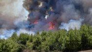 Δυτική Ελλάδα: Φωτιά στις Οινιάδες Αιτωλοακαρνανίας