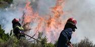 Δήμαρχος Μαραθώνα: 'Εκτός ελέγχου η φωτιά στη Νέα Μάκρη'