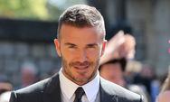 O David Beckham θα κυκλοφορήσει το δικό του οργανικό μέλι!