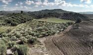 Δασικοί χάρτες: Ποιοι ιδιοκτήτες σώζουν την περιουσία τους
