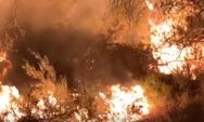 Ολονύχτια μάχη με τις φλόγες στον Έβρο (video)