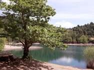 Λίμνη Τσιβλού… η ομορφιά στα ορεινά της Αχαΐας (φωτο)