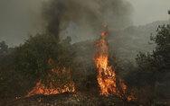 Φωτιά ξέσπασε στα Βαρδούσια Λαμίας
