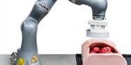 Ένα ρομπότ κάνει ευκολότερες τις κολονοσκοπήσεις