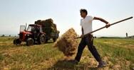 Κρήτη: Οι αγρότες διεκδικούν αποζημιώσεις για τον κορωνοϊό