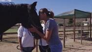 Κάτια Ζυγούλη - Πήγε για ψυχοθεραπεία με άλογα και μοιράζεται την εμπειρία της (video)